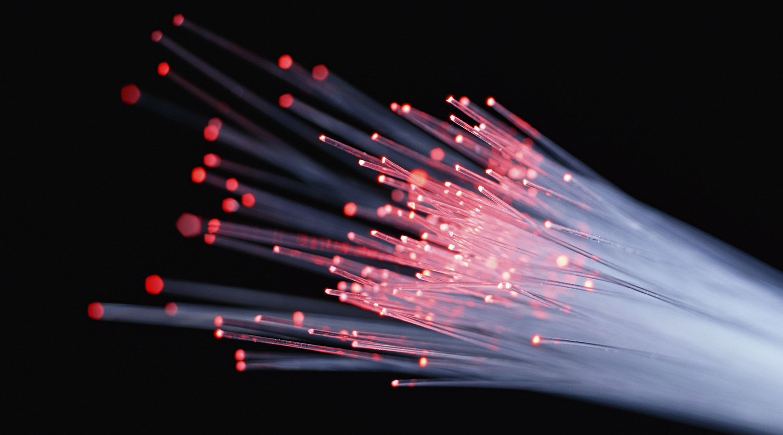 Optical Fiber Perimeter; Image Courtesy: Fiber SenSys